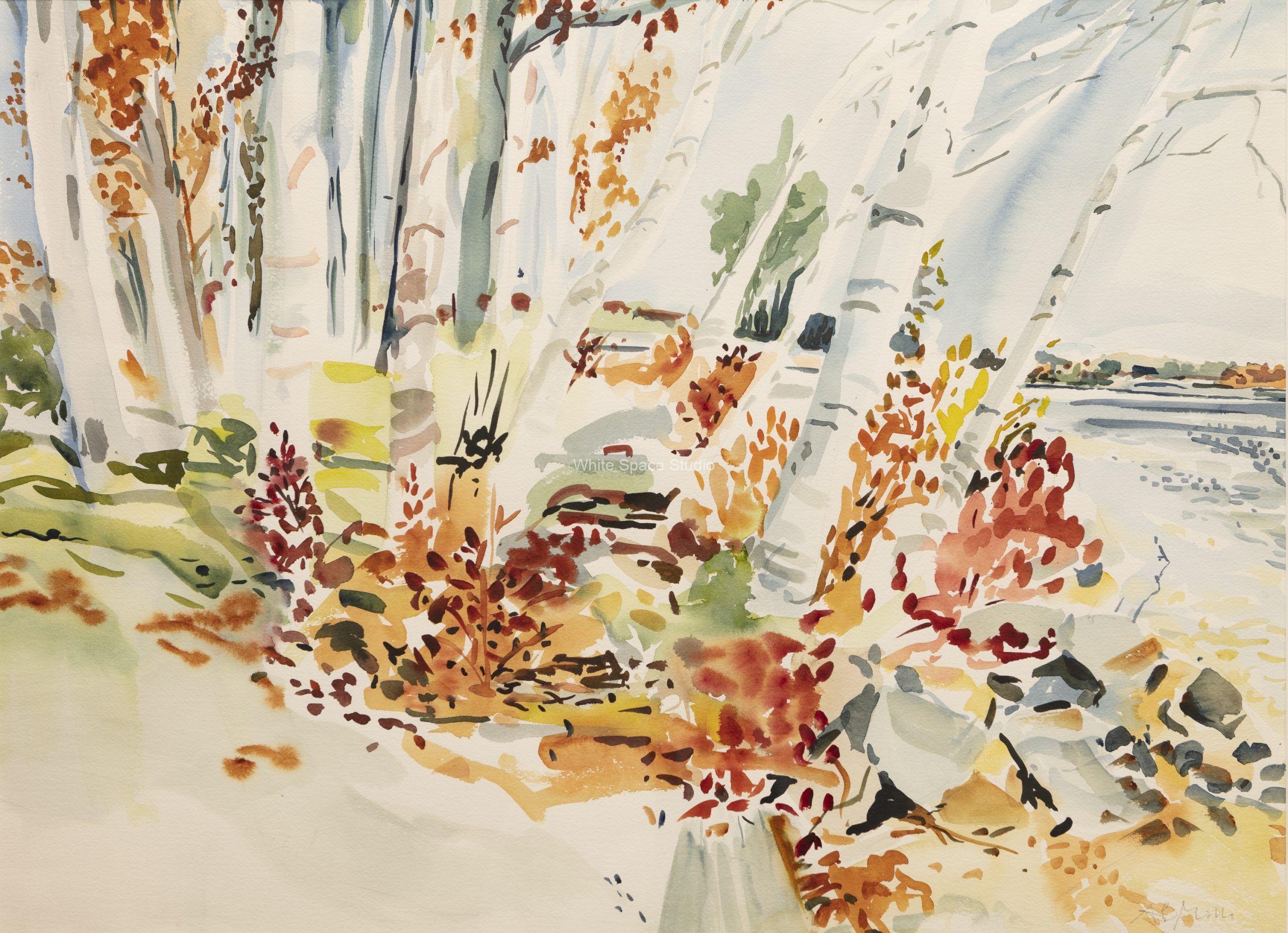 Birches Lake Winnipesaukee Arlene Black Mollo Art