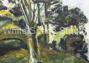 Golden Gate Conifer Sausalito California Arlene Black Mollo Watercolor Artwork