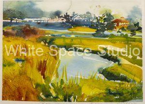 Penzance Point Woods Hole Cape Cod Arlene Black Mollo Watercolor Artwork