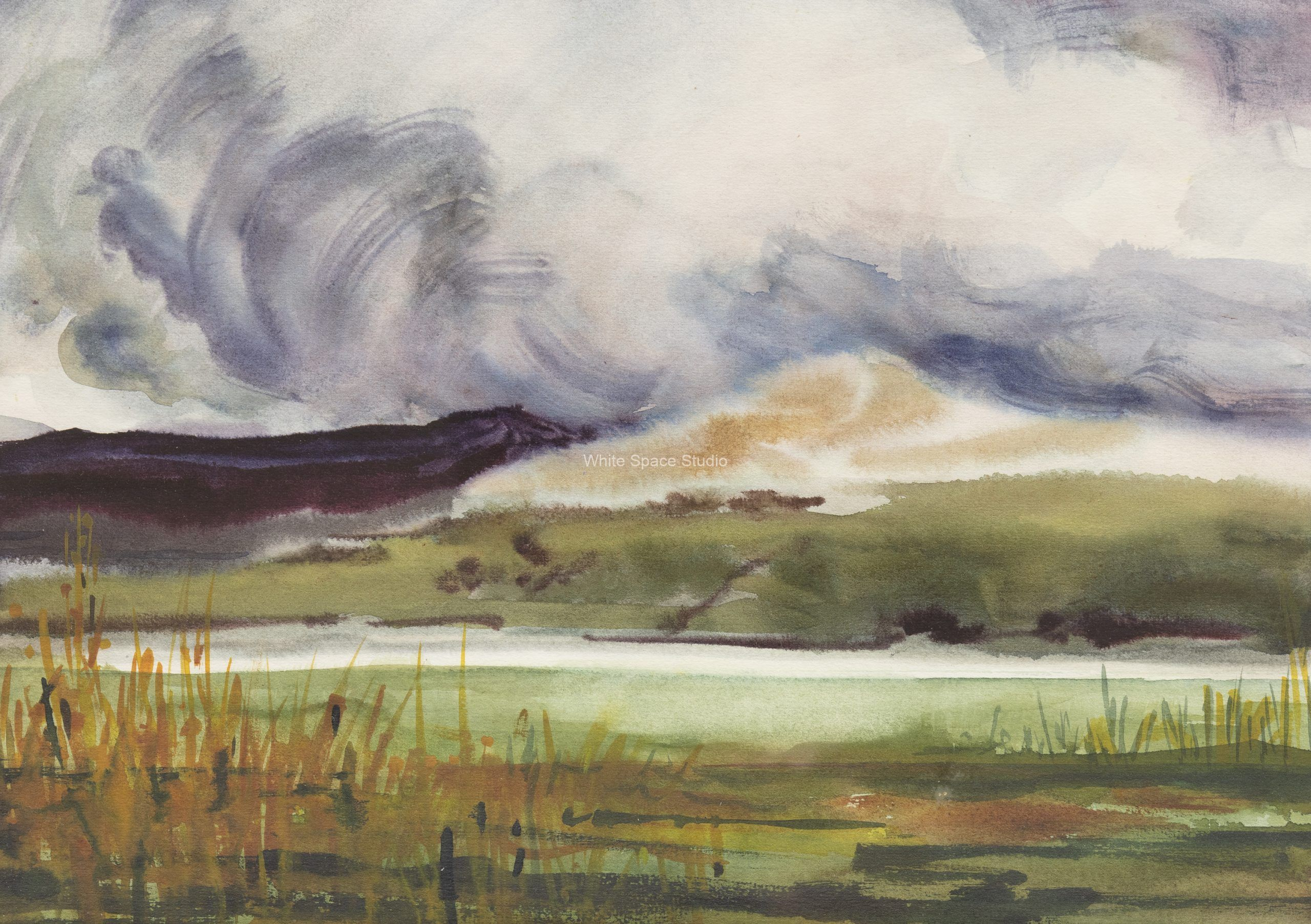 Scottish Storm Arlene Black Mollo Watercolor Artwork