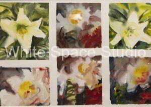 Six Lilies Falmouth Heights Cape Cod Three Sails Key West Arlene Black Mollo Watercolor Artwork